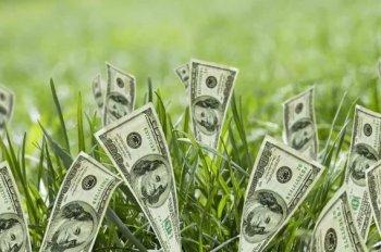 Нынешние реалии финансовой успешности.